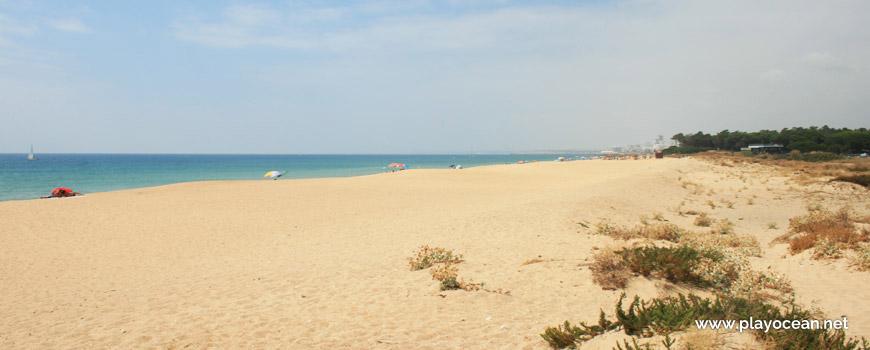 Oeste na Praia do Trafal