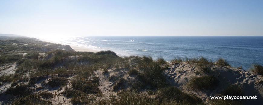 Dunas da Praia do Samouco