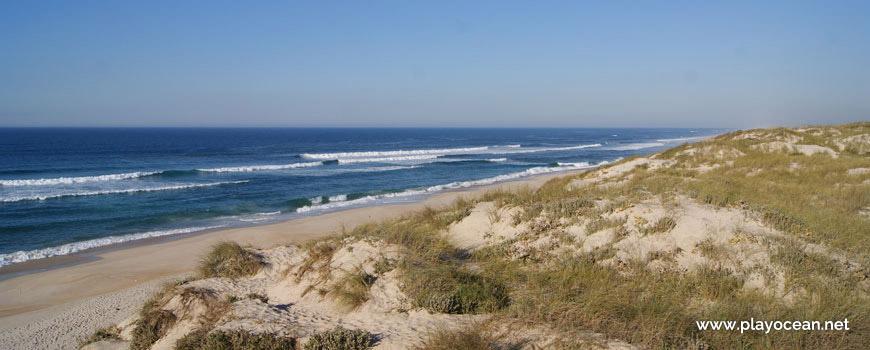 Praia do Samouco Beach