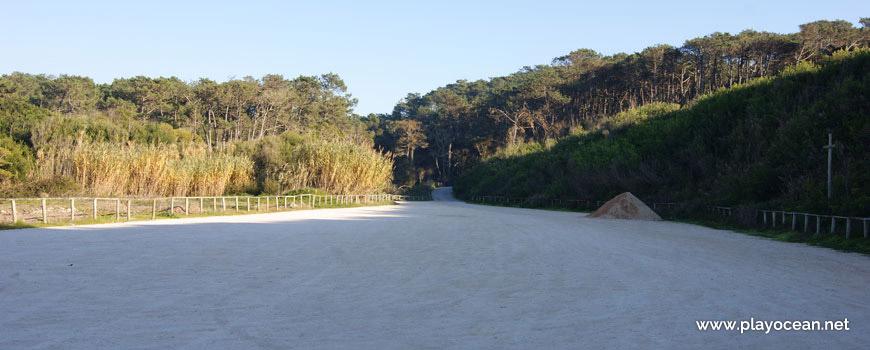 Saída da Praia Velha