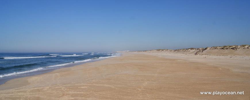 Norte da Praia da Vieira (Norte)