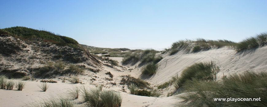 Dunas da Praia da Gaivina