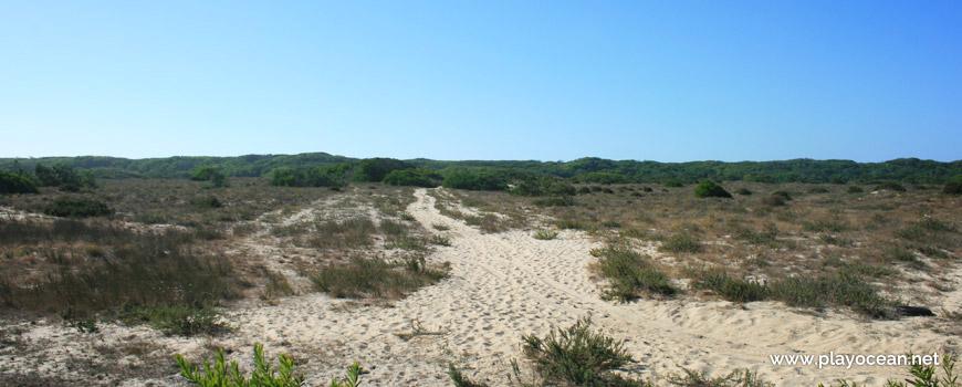 Caminho para a Praia de Muranzel