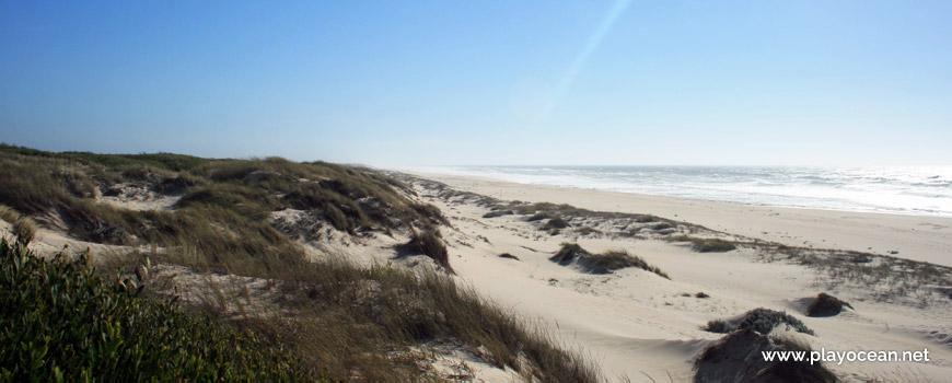 Dunas da Praia de Muranzel