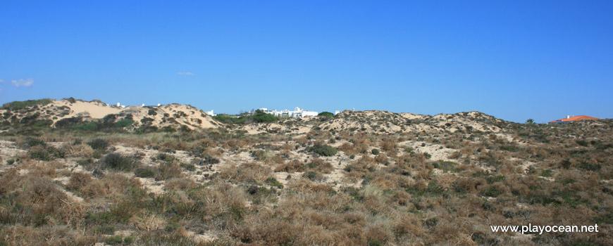 Dunas na Praia do Carreiro das Fazendas