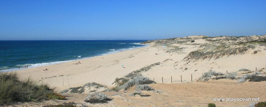 Praia do Malhão (Centro)