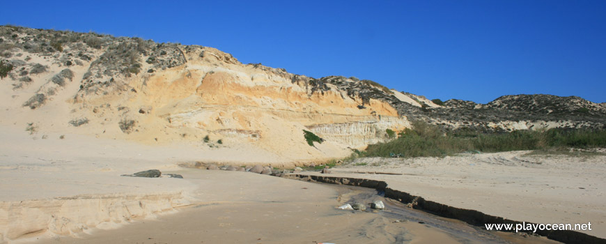 Ribeiro na Praia do Saltinho