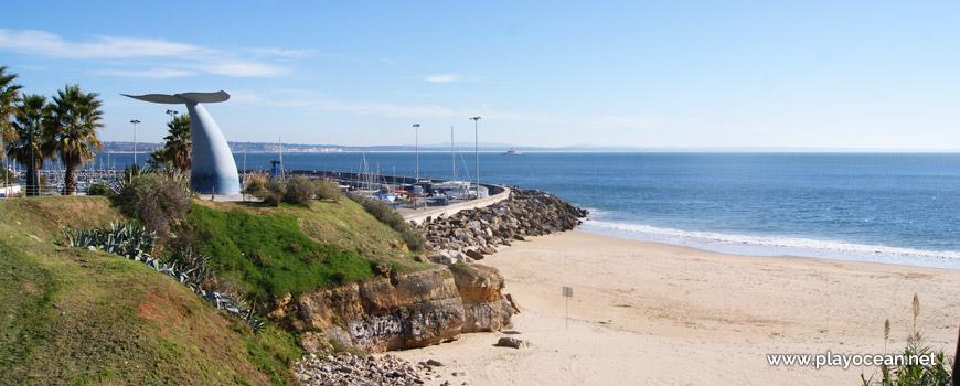 Cauda de baleia azul, Praia da Torre