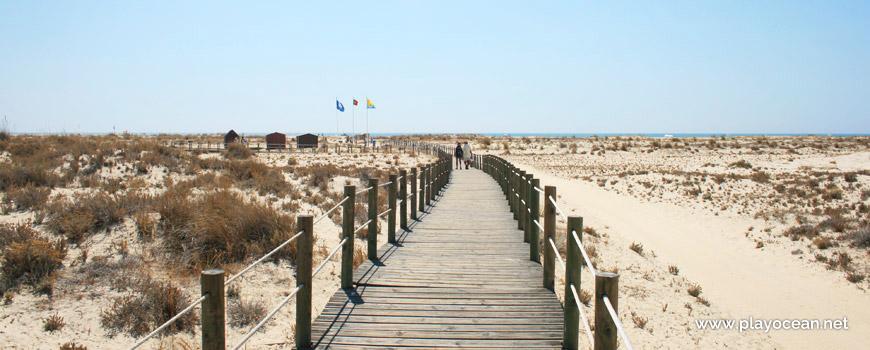 Acesso à Praia da Armona (Mar)