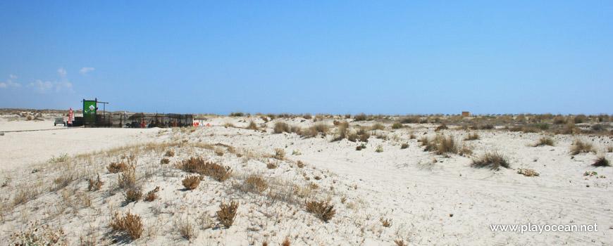 Dunas da Praia da Armona (Mar)