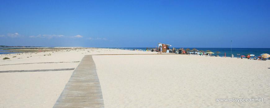 Este na Praia da Fuseta (Mar)