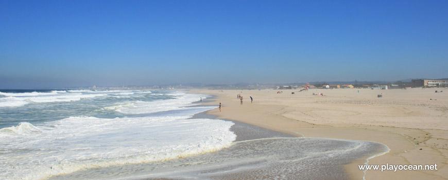 North of Praia de Esmoriz Beach
