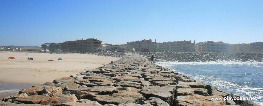 Houses of Praia de Esmoriz Beach