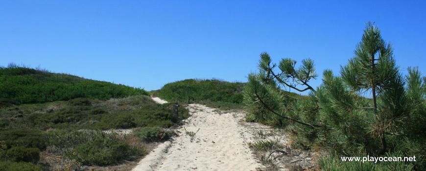 Caminho para a Praia da Marreta