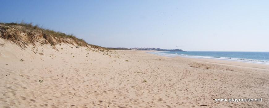 South at Praia do Medão Grande Beach