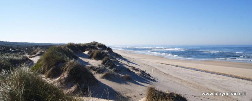 South of Praia do Osso da Baleia Beach