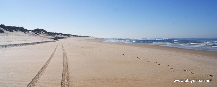 Praia do Osso da Baleia, Sul