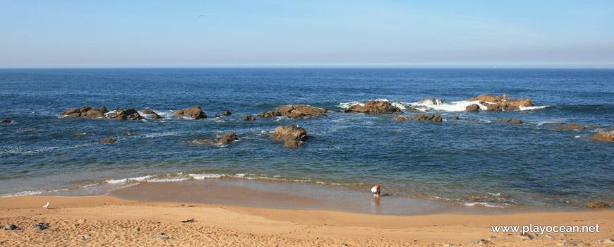 Sea of Praia de Gondarém Beach