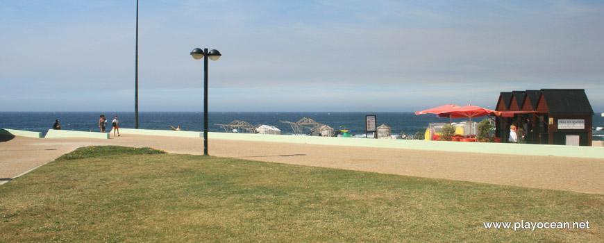Lawn at Praia dos Beijinhos Beach