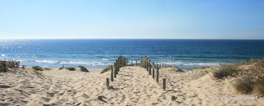 Acesso à Praia Codixeira