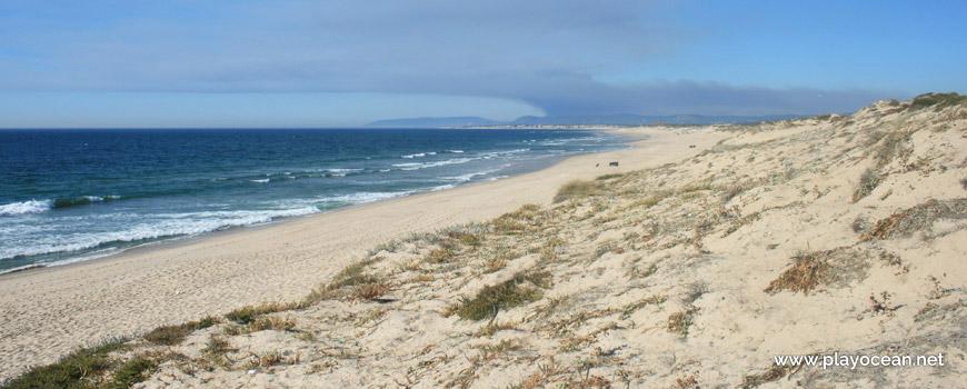 Norte da Praia da Codixeira