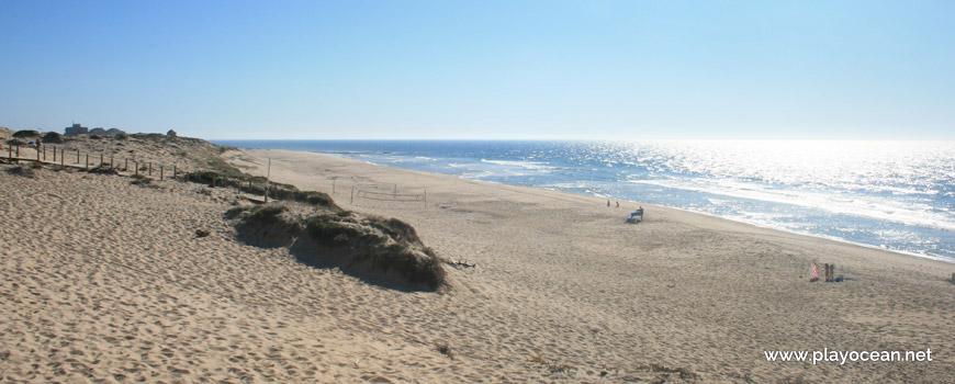 Sul da Praia da Codixeira