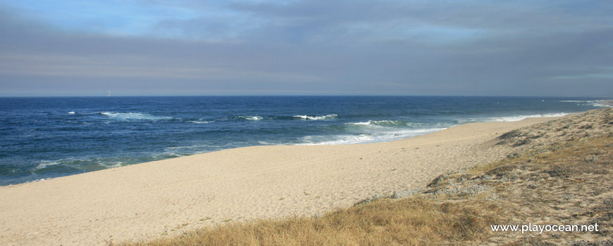 Praia das Pedras Negras
