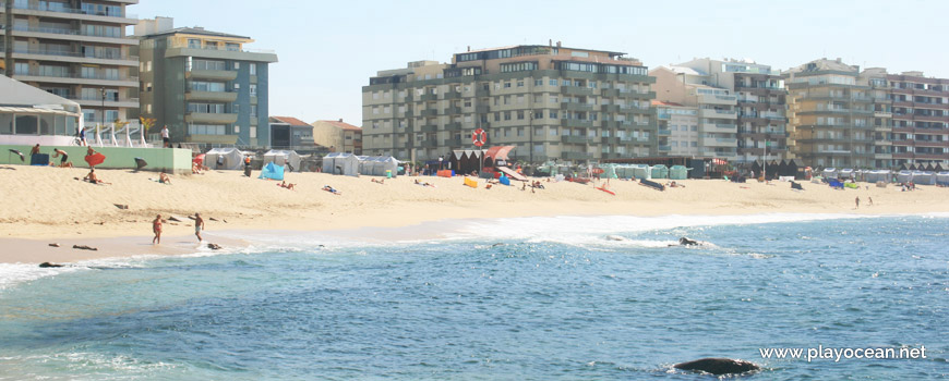 Praia da Salgueira Beach