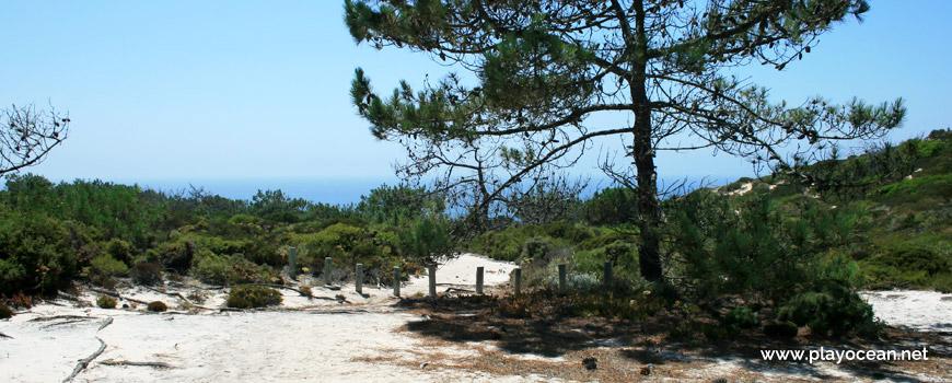 Trilho descendente Praia das Areias Brancas
