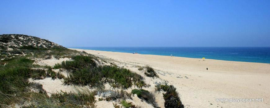 Sul Praia do Monte Velho
