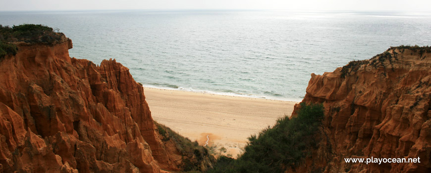 Topo da Arriba Fóssil da Costa da Caparica