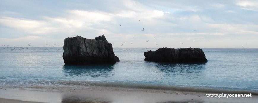 Rochedos à beira-mar da Praia da Ribeira do Cavalo