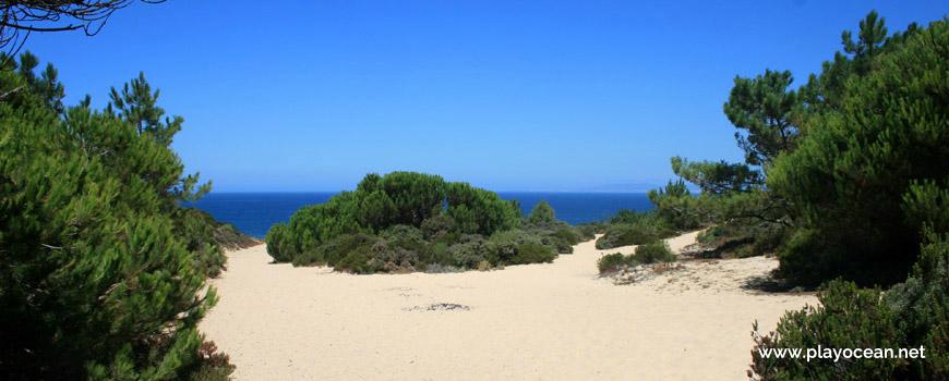 Trilho da Praia do Rio de Prata