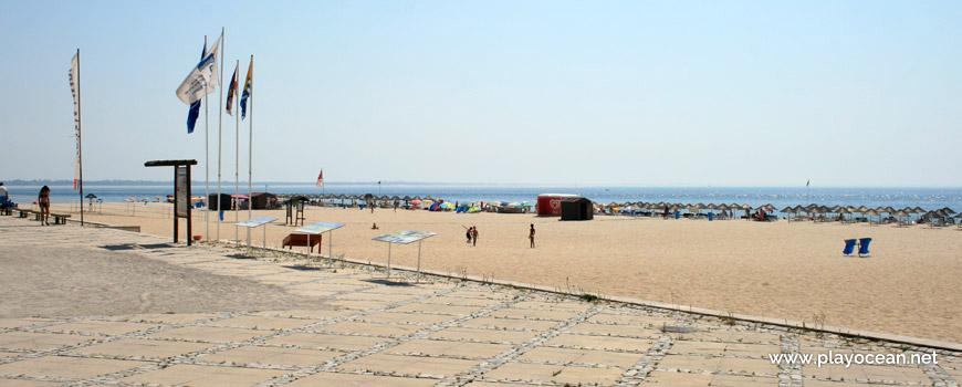 Estandartes da Praia da Figueirinha