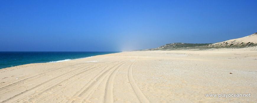 Norte Praia do Areão