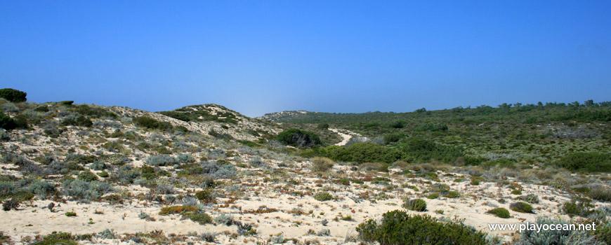 Dunas Praia do Areão