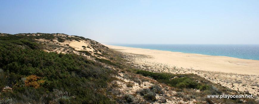 Sul Praia do Areão