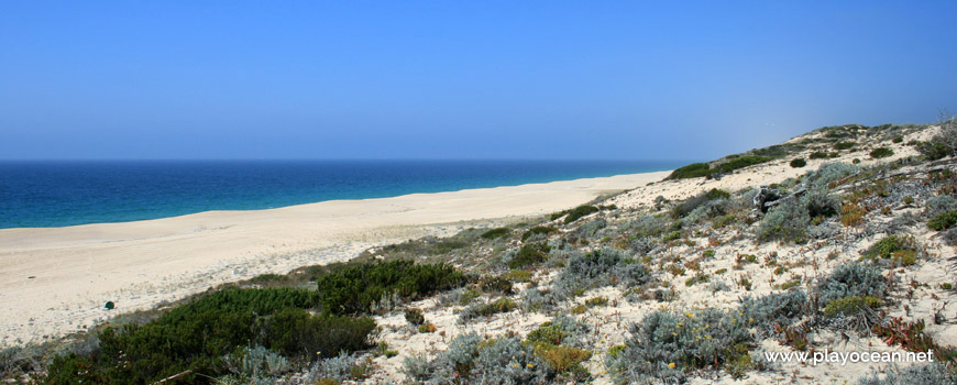 North dunes at Praia do Areão Beach