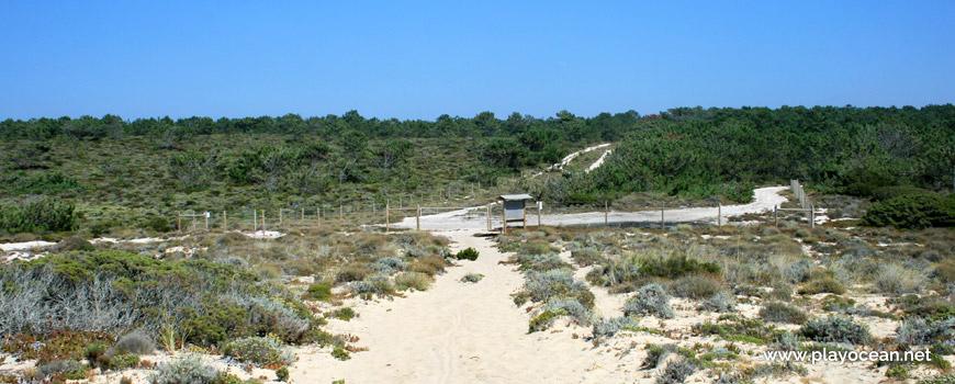 Acesso à Praia do Areão