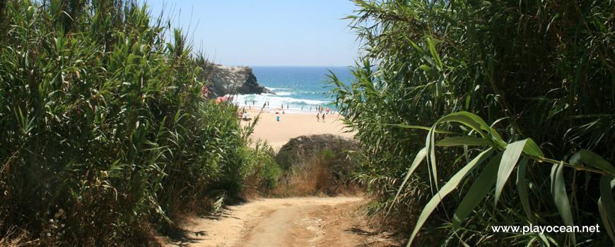 Caminho Praia Grande de Porto Covo