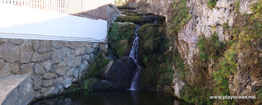 The Cameijo Stream