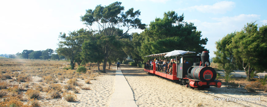 Train, Praia do Barril Beach