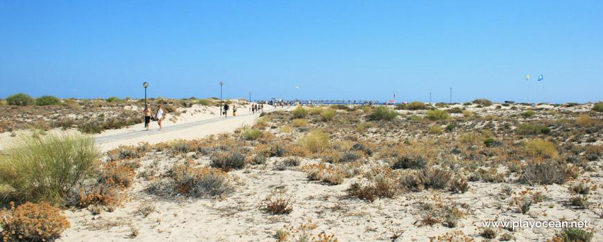 Acesso à Praia da Ilha de Tavira (Mar)