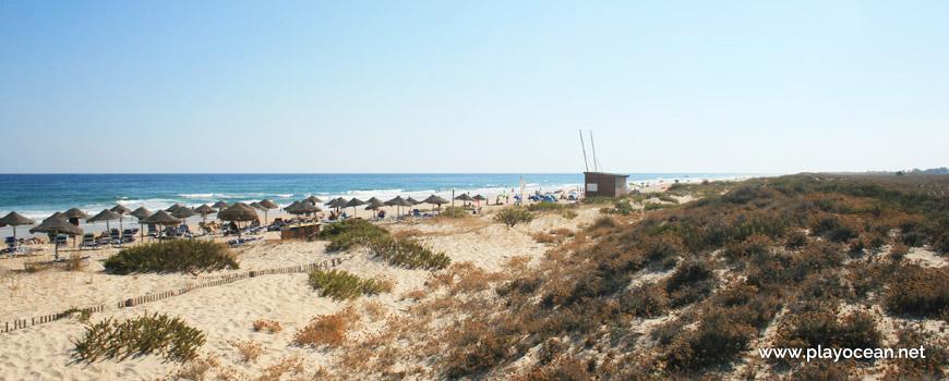 Oeste na Praia da Terra Estreita