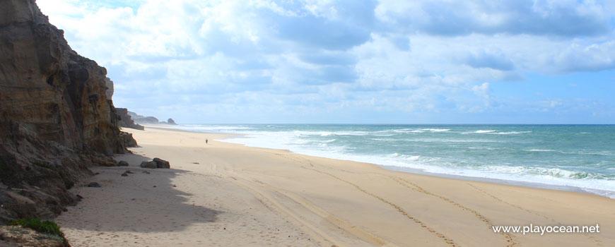 South at Praia do Amanhã Beach