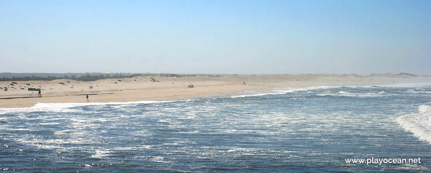 Panorâmica da Praia da Duna Alta