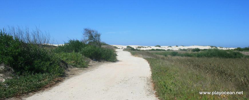 Caminho para a Praia da Duna Alta