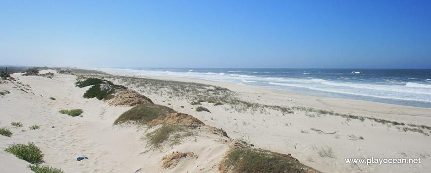 Sul da Praia da Gafanha da Boa Hora