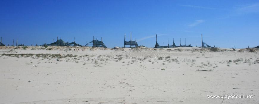 Duna na Praia da Gafanha da Boa Hora