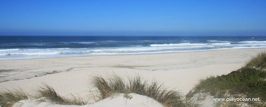 Praia do Labrego